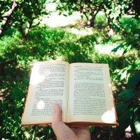 Reading time :: Алексей Бачурский