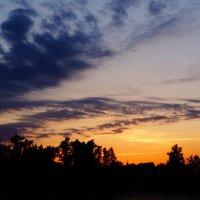 Вечернее небо :: Andy Bayt