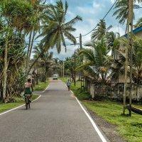 Ланкийские будни. :: Edward J.Berelet