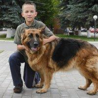 Мальчик с собакой. :: Анатолий Сидоренков