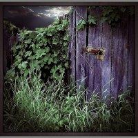 Старый сад :: Григорий Кучушев