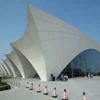 Шанхай.Плавательный бассейн :: Андрей Фиронов