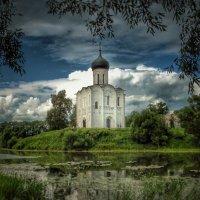 Покрова на Нерли :: Дмитрий Багаев
