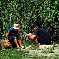 На рыбалке с отцом :: Владимир Бровко