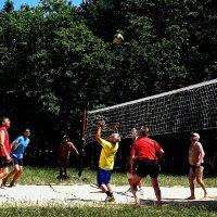 Пляжный волейбол Фото№2 :: Владимир Бровко