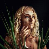 Амазонка :: Виктория Андреева
