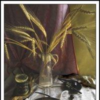 Голландские впечатления :: galina bronnikova