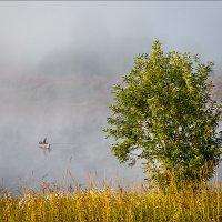 Утро, туман... рыбалка... :: Александр Никитинский