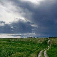 Полевая дорога :: Виктор Четошников