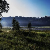Утро на берегу :: Анатолий Иргл