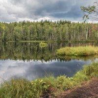 Подмосковный пейзаж. Фото 7. :: Вячеслав Касаткин