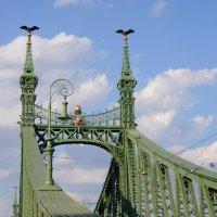 Мост :: redfox