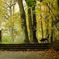 Осенняя грусть :: Waldemar .