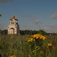 В поле. :: Лена Минакова