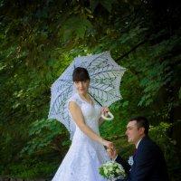 я хочу признатися в любові :: Тарас Семигаленко