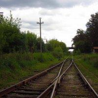 Пути сходятся :: Андрей Лукьянов