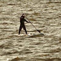 Сёрфинг - греби се и греби. :: Владимир Гилясев