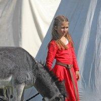 Дочь рыцаря :: Вера Моисеева