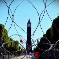 Tunisia :: Екатерина Кудреватых