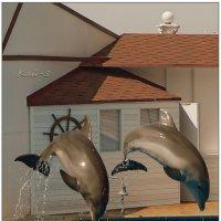 День Дельфина в Севастополе... :: Кай-8 (Ярослав) Забелин