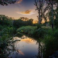 На берегу очень тихой реки... :: Ксения Довгопол