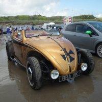 Volcswagen Beetle :: Natalia Harries
