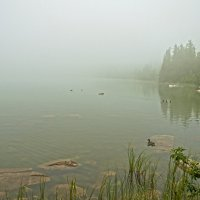 Foggy Lake :: Roman Ilnytskyi