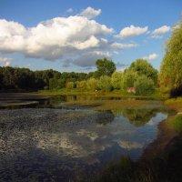 Красивый вечер на пруду :: Андрей Лукьянов