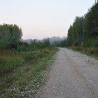 Мои дороги :: Андрей