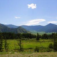 Национальный парк Уч Энмек-Горный Алтай :: Наталия Григорьева