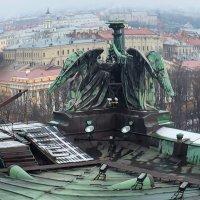 Санкт-Петербург :: Zifa Dimitrieva