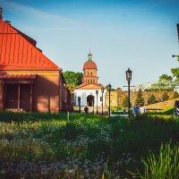 кузнецкая крепость :: Алена Желонкина