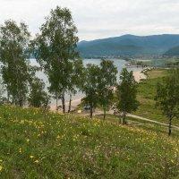 Природа Байкала. :: Валерий Молоток