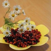 Лесные ягоды... :: Ljudmila Korotkova