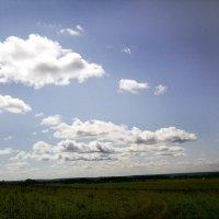 Воткинский район.деревня Банное :: Венера Главатских