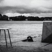 Черно-белый Петербург :: Artem Patsera Пацера