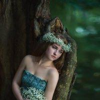 Лесная фея :: Ludmila Zinovina