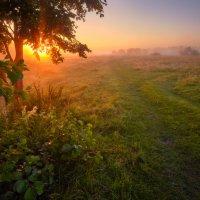 Там,где свет... :: Roman Lunin