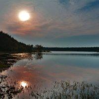 На озере :: Виктор Филиппов