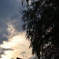 лето :: Дарья Бухарова