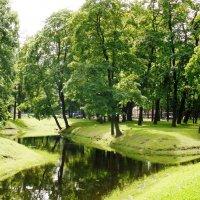 сад Таврический... :: Марина Харченкова