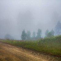 Туман,дорога :: Александр
