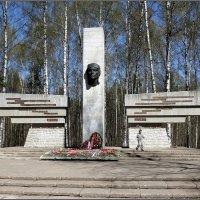 Памятник защитникам Ленинградского неба :: Вера
