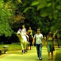 Прогулка на свежем воздухе :: Viktor Heronin
