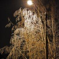Ночь,улица,фонарь... :: Николай Смирнов
