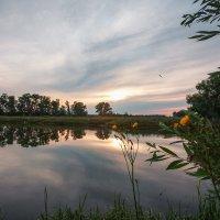 На озере! :: Николай Алехин
