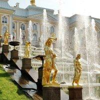 Скульптуры и фонтаны на фоне дворца :: Владимир Гилясев
