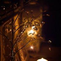 ...а вчера кончился свет... :: Ольга Егорова
