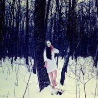 Душа дерева :: Мира Ключникова
