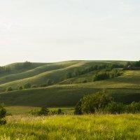 Там на холмах... :: Александр Фищев